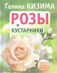 Кизима. Розы и кустарники